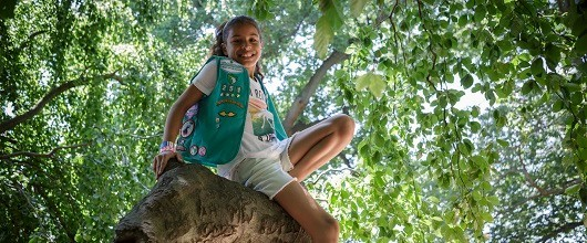A Girl Scout Junior in a tree